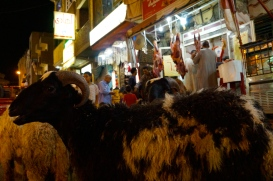A butcher shop and lambs in waiting in downtown Luxor
